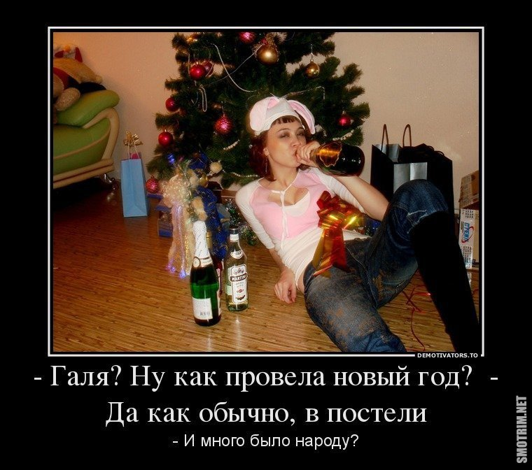 Демотиваторы новый год что