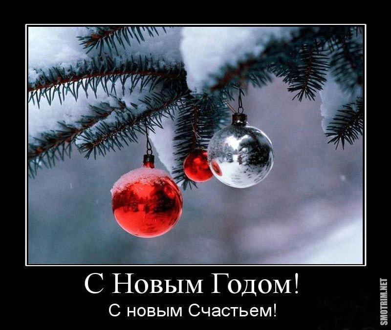 Демотиваторы прикольные про новый год