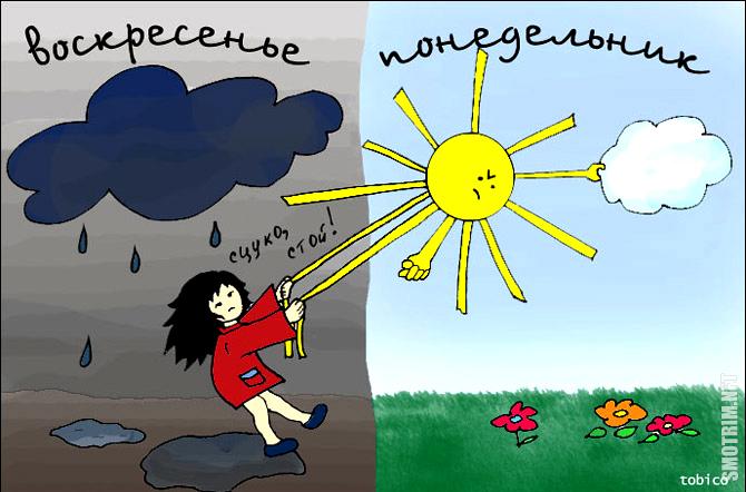 рекомендуют картинки приколы на тему ветра и дождя голые