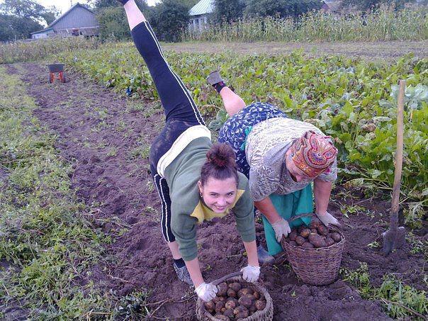 Смешные фото работы в огороде