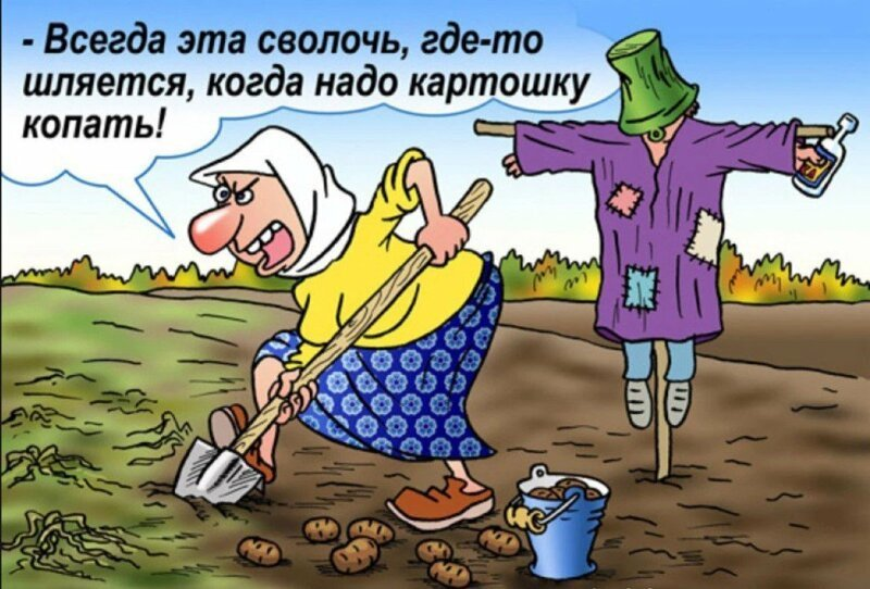 Картинки про субботу прикольные с юмором про огород
